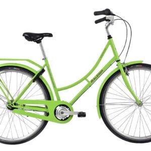 Raleigh-Darlington-grøn-dame-cykelhandler-og-cykelværksted